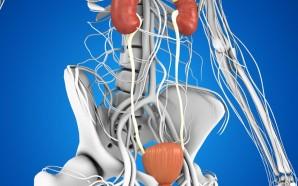 overactive-bladder