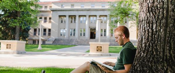 Source: colostate, online college degree, online college, online university, online degree