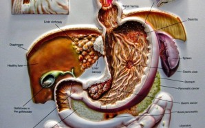 new-site-pancreatic-cancer